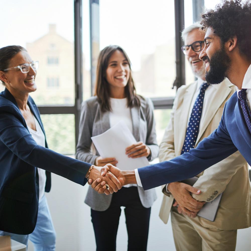 Partner Business Shake